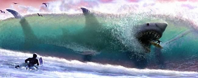 Фотки акулы мегалодон