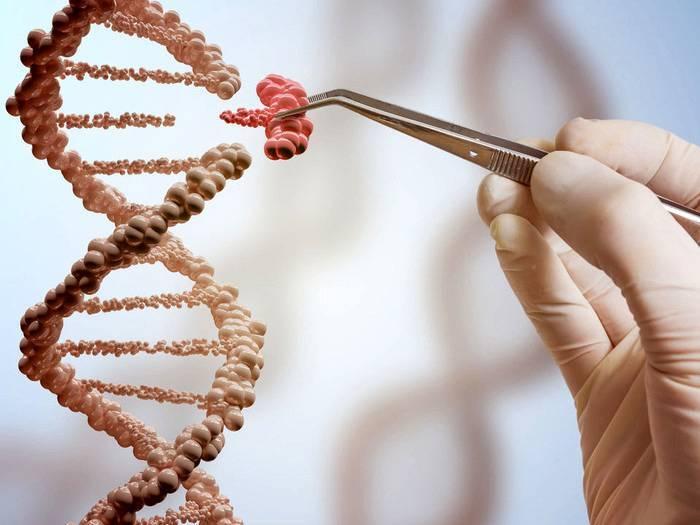 Набор половых хромосом у мужчин