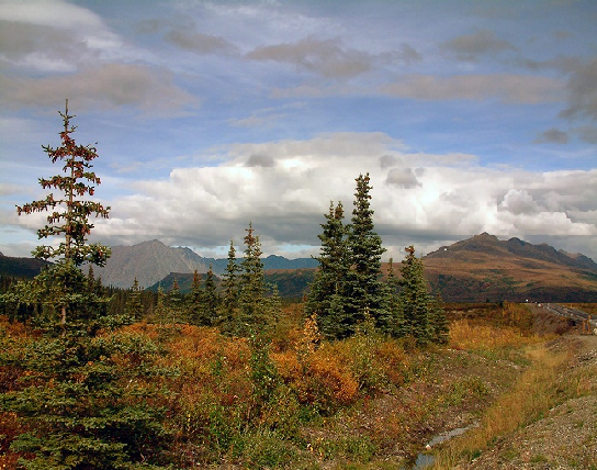 Природные зоны тундры и лесотундры