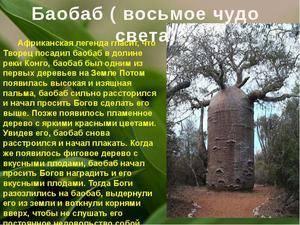 Какое дерево характерно для саванн африки