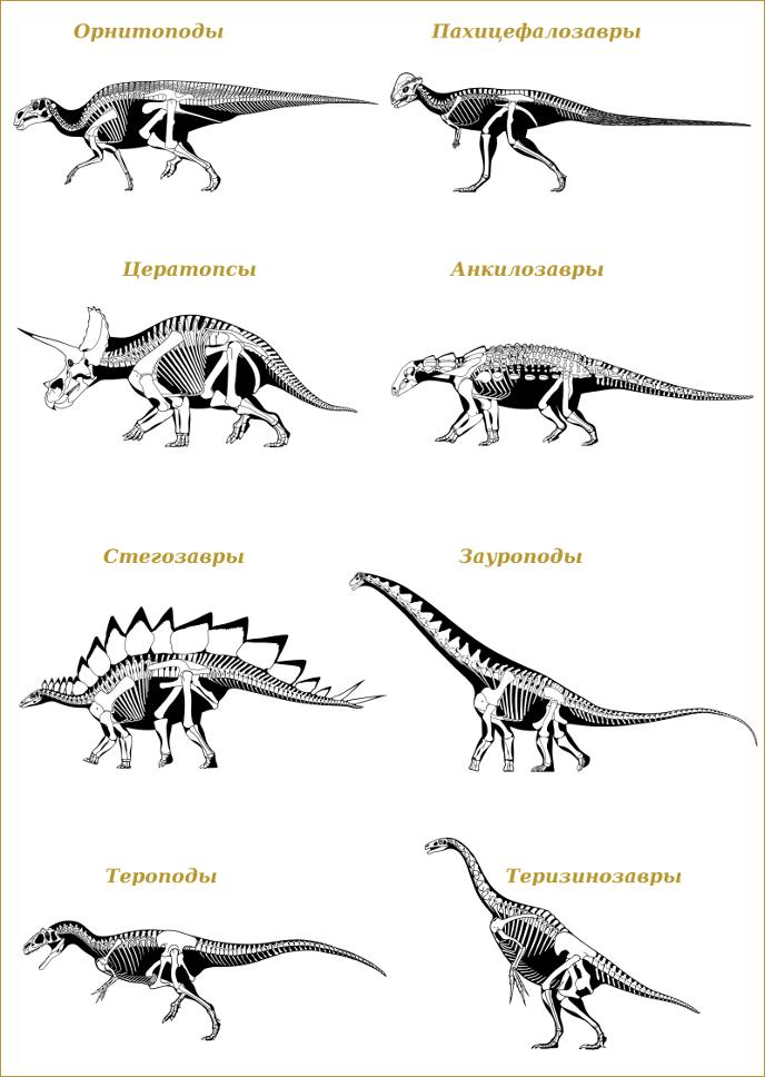 Какие виды динозавров существовали