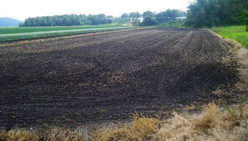 Самые плодородные почвы мира