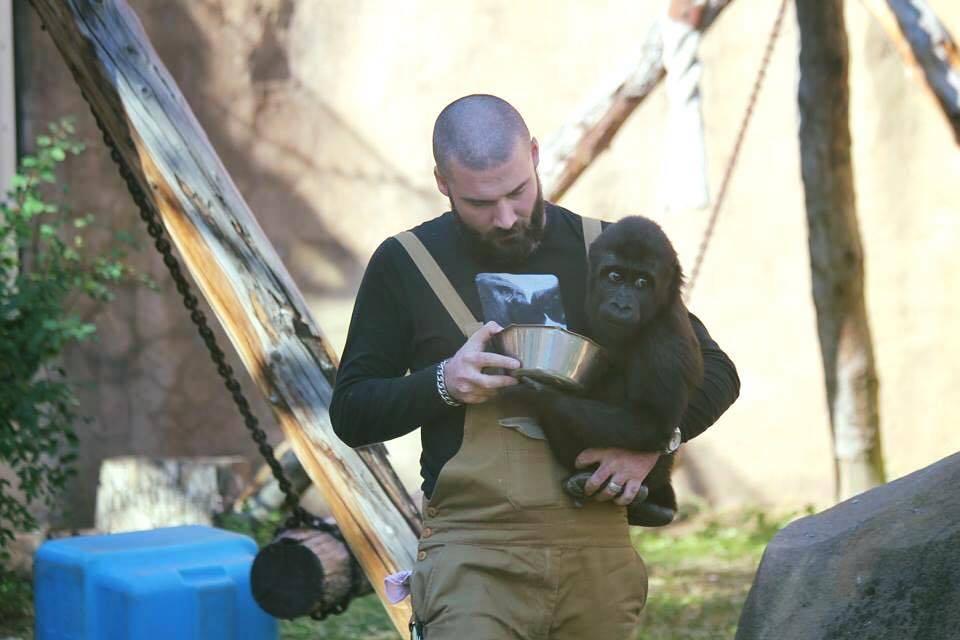 Работники зоопарка профессии