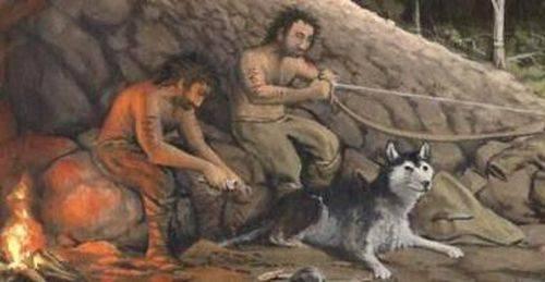 Откуда появились собаки на земле