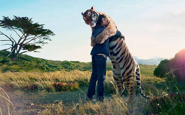 Ареал обитания тигров на карте мира