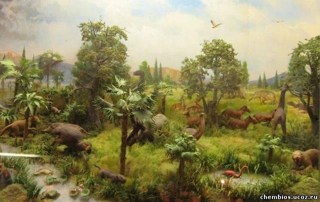 Кайнозойская эра растения и животные