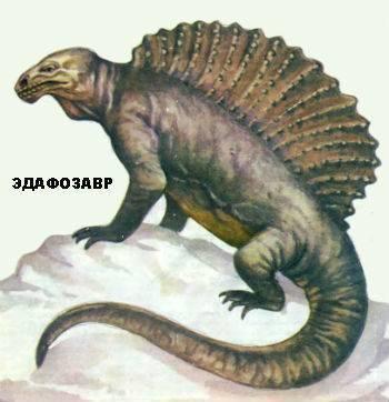 Представители фауны палеозоя