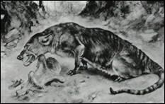 Семейство парнокопытных африканских животных