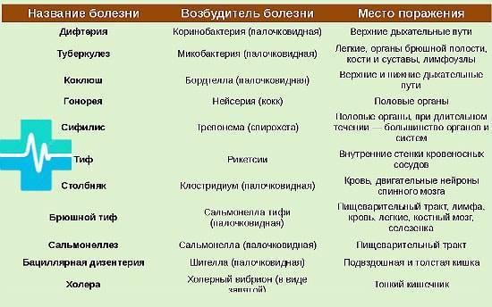 Какие болезни вызываемые бактериями вам известны
