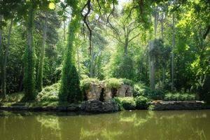 Природная зона степи растения и животные