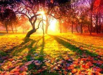 Эссе на тему осень