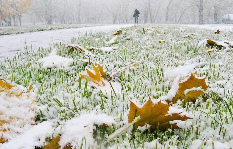 Сочинение на тему первый снег