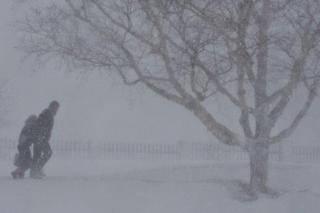 Напишите небольшой текст описывая зимнюю метель