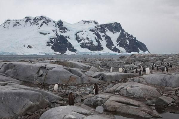 Антарктида на карте мира фото