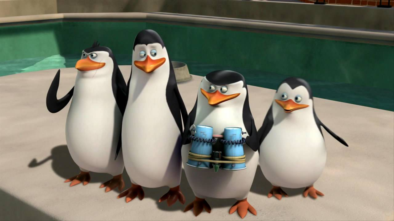 Пингвины в природе