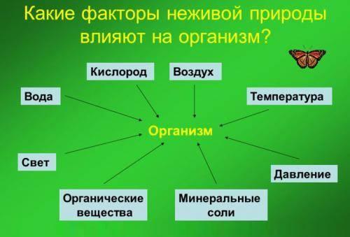 Объекты неживой природы примеры 3 класс