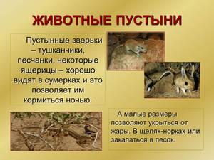 Где находятся пустыни в россии