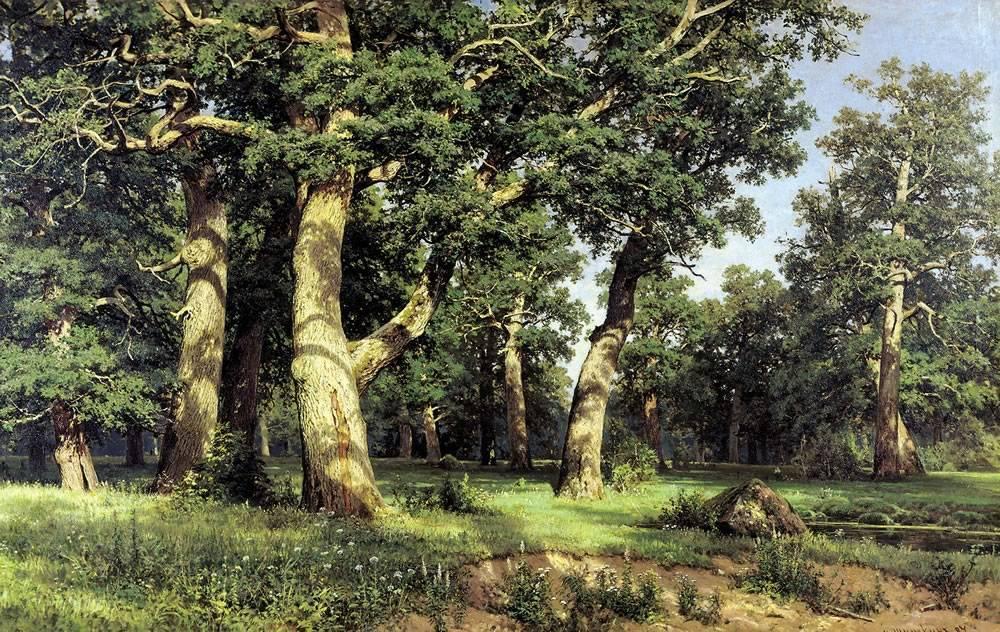 Картина шишкина дубы