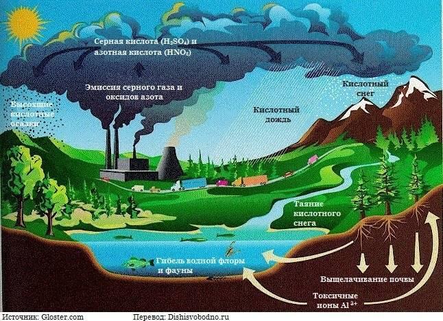Экологические проблемы список