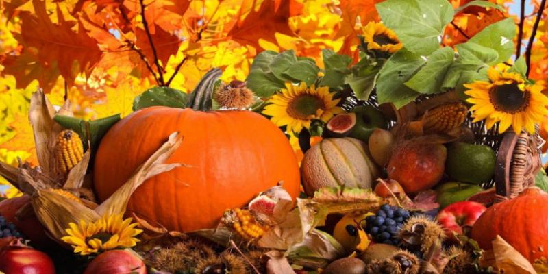Предложения на тему поздняя осень