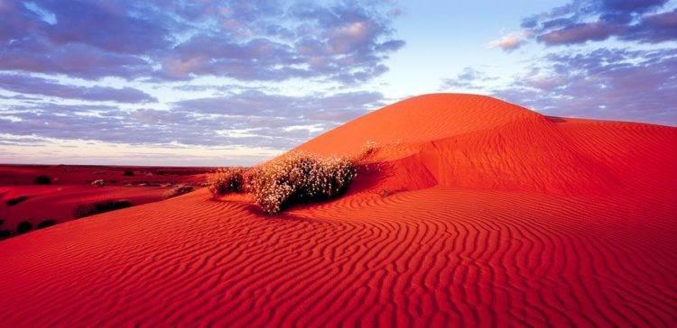 Часть пустыни