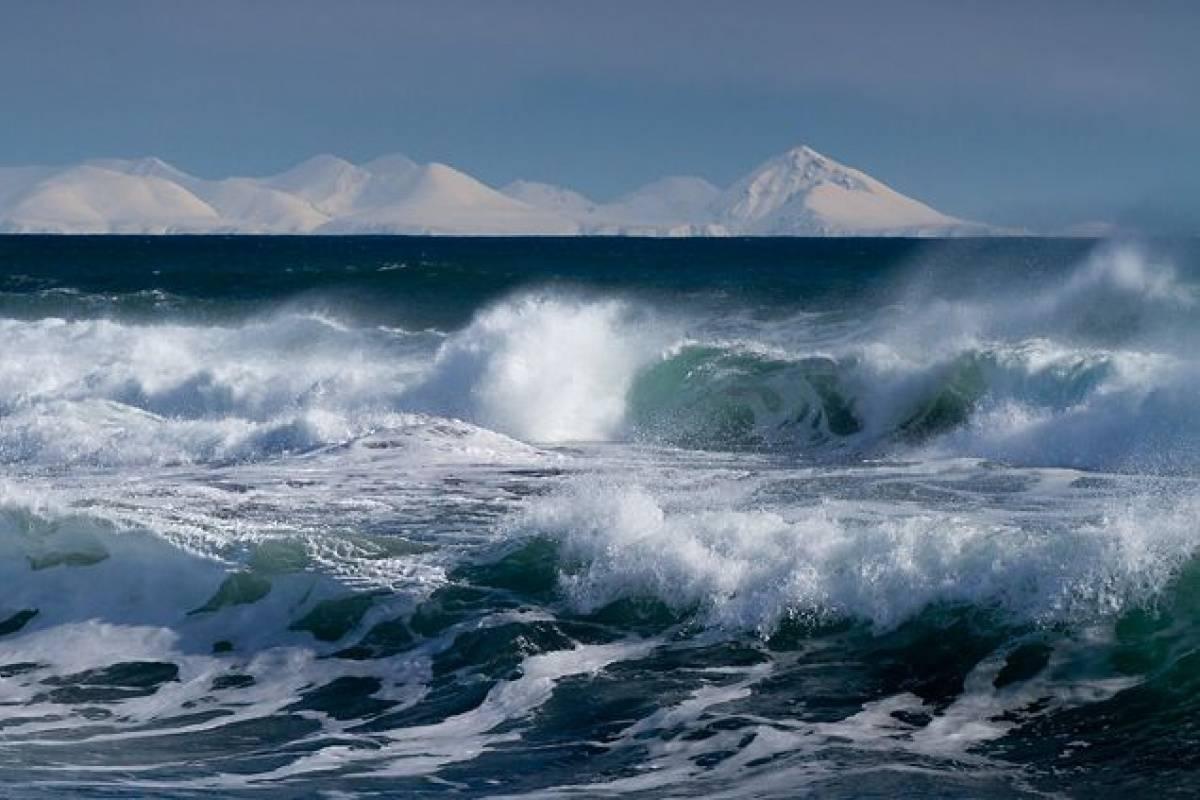 Охрана природы тихого океана