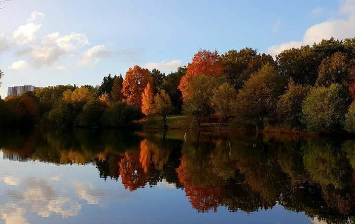 Анализ стиха фета осень