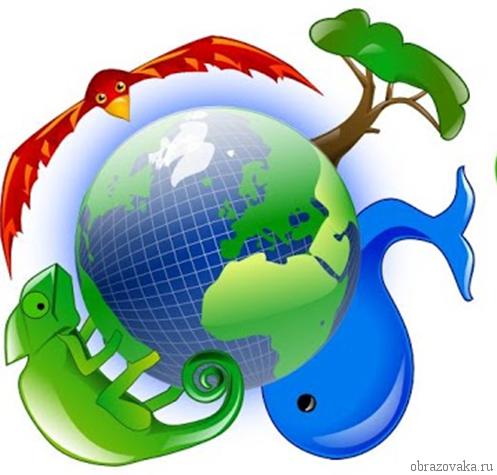 Состав оболочки нашей планеты