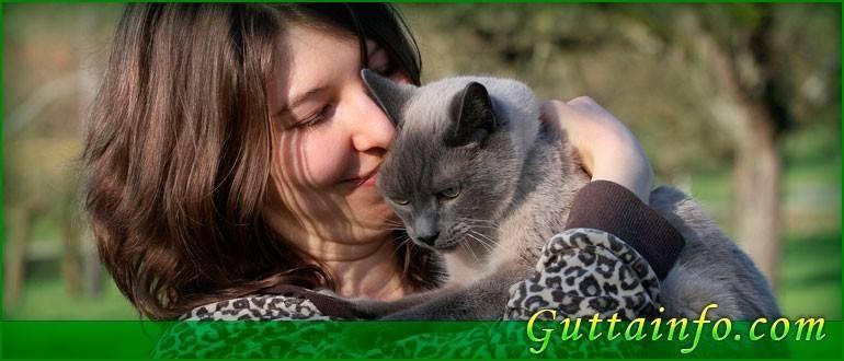 Домашние животные польза для человека