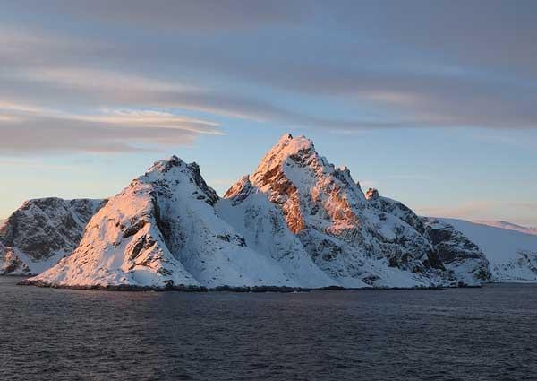 Сообщение про арктику