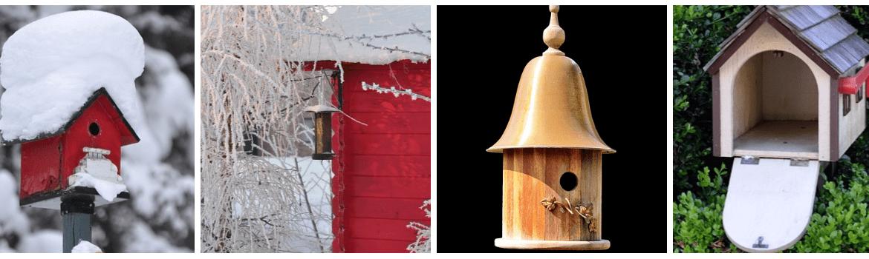 Как можно помочь птицам зимой