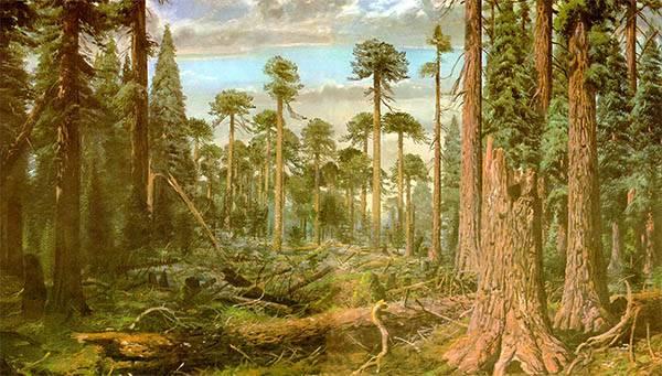 Природа юрского периода
