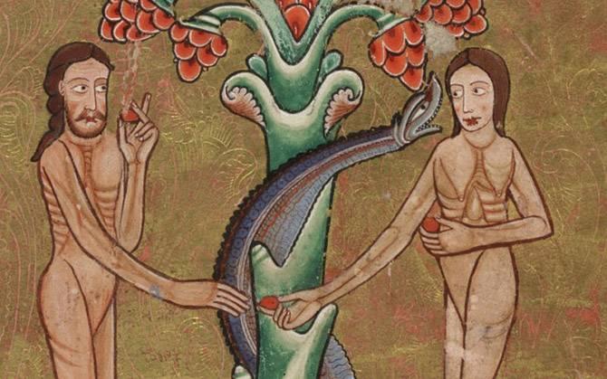 Змеи хладнокровные или теплокровные