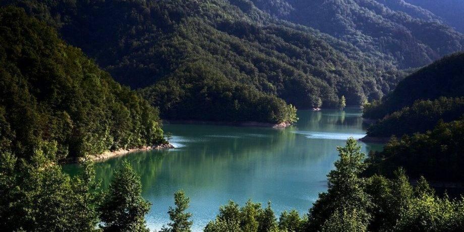 Наука об озерах