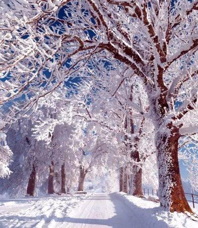 Описание природы зимой сочинение