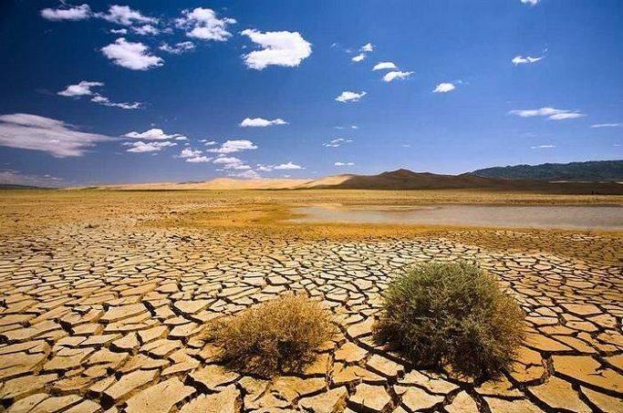 Тропический сухой климат