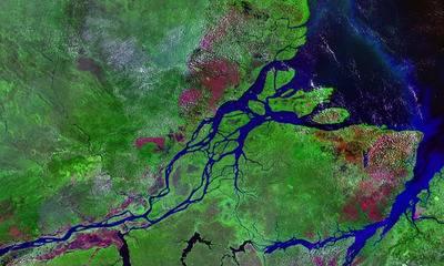 Самая длинная река мира нил или амазонка