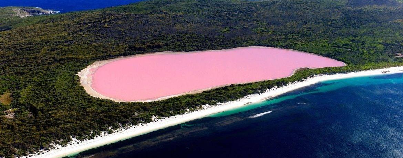 Розовые озера мира