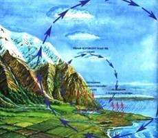 Части гидросферы схема