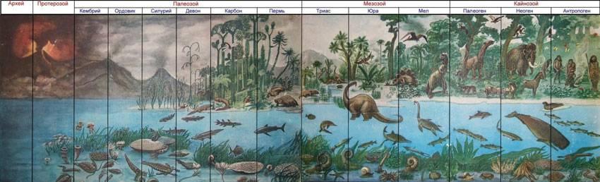 Возникновение первых птиц эра
