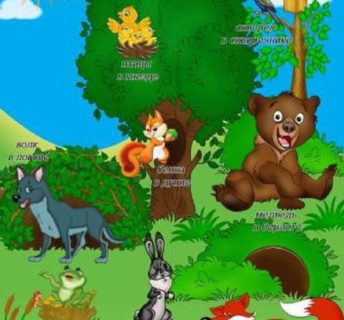 Где живут дикие животные