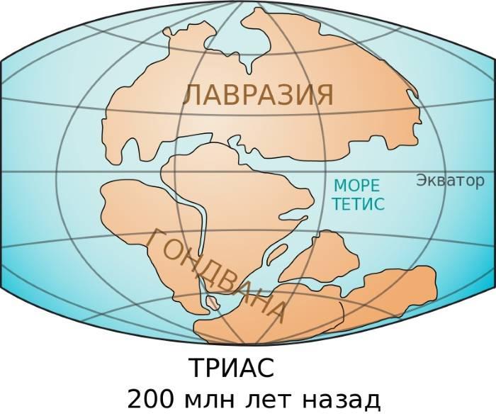 Какой самый большой материк на земле