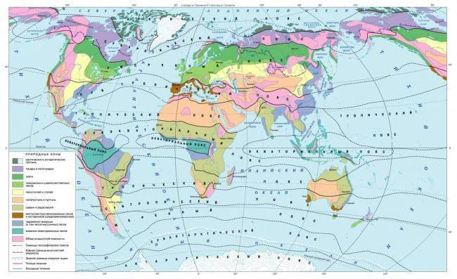 Тропические широты