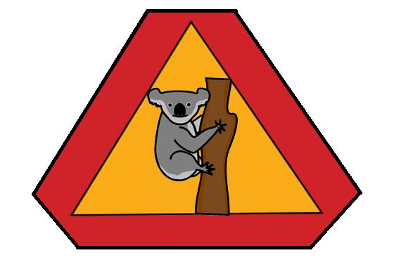 Размер коалы