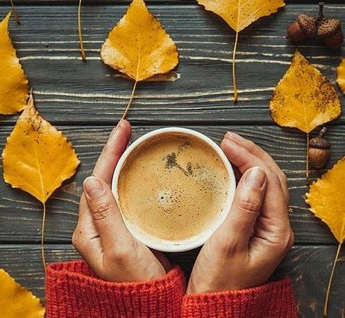 Осенняя природа сочинение