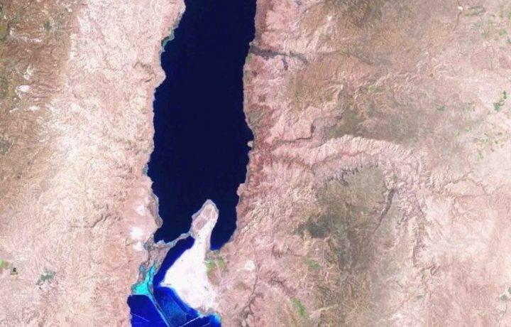 Что водится в мертвом море