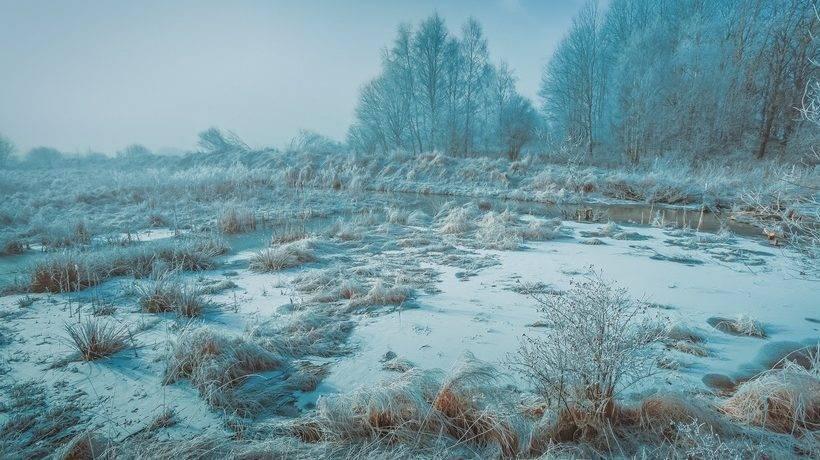 Природные условия северной европы