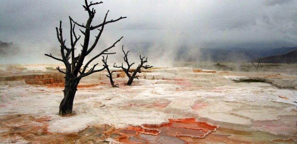 Вулкан еллоу стоун просыпается последние новости