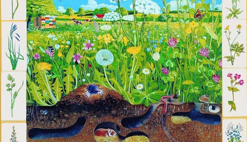 Свойства биогеоценоза