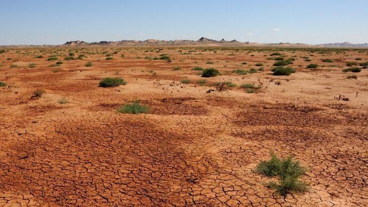 Пустыня монголии и китая